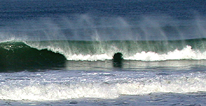 Curling waves and spindrift at beach in La Jolla, California.